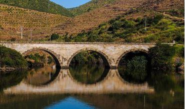 Bild für Kategorie Ribera del Duero