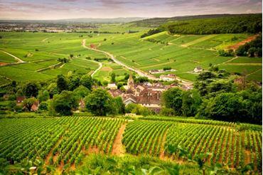 Bild für Kategorie Bordeaux