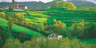 Bild für Kategorie Navarra