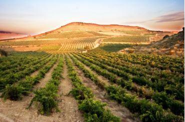 Bild für Kategorie Spanien