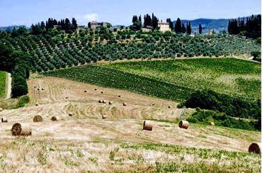 Bild für Kategorie Italien