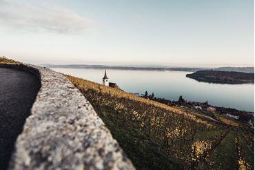 Bild für Kategorie Bielersee